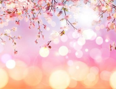 bem-vinda-primavera